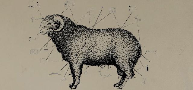 La modernisation de l'agriculture d'après guerre portée au nom de la science et du progrès ne s'est pas imposée sans résistances. L'élevage ovin, jusque là épargné commence à ressentir les premiers soubresauts d'une volonté d'industrialisation. Depuis peu une nouvelle obligation oblige les éleveurs ovins à puçer électroniquement leurs bêtes. Ils doivent désormais mettre une puce RFID, [...]