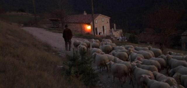La lutte des éleveurs contre le puçage RFID des moutons peut apparaître comme un combat de plus. Pour certains c'est un combat comme un autre, un combat contre les obligations […]