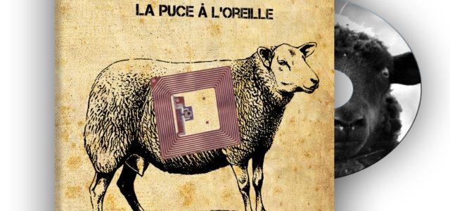 Vous pouvez commander le DVD du film Mouton 2.0 au prix de 12€ (frais de port compris) (Nouvelle édition avec les sous-titres en Anglais, Espagnol, Allemand et Italien) – Par […]